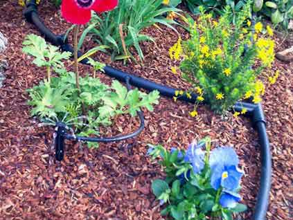Drip Irrigation sales and Installation